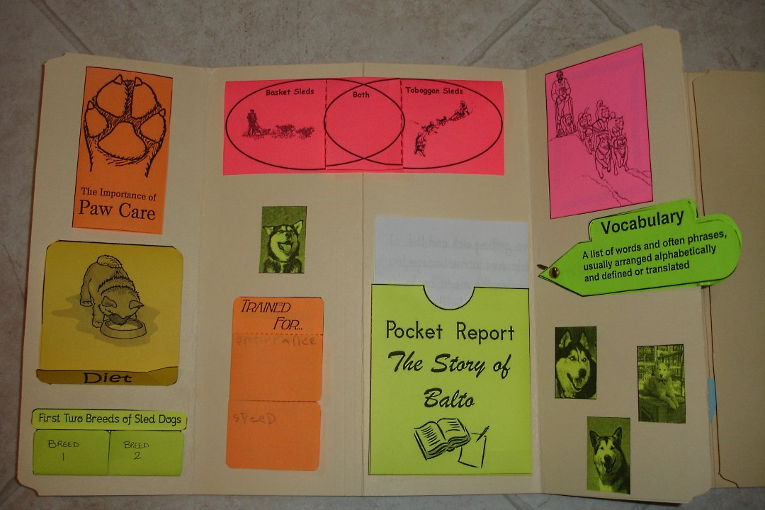 Sled dogs lapbook project from homegrown hearts christian